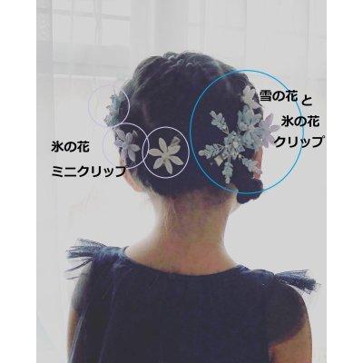 画像3: 氷の花雪の花(クリップ髪飾り)★★★